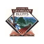 township-georgian-bluffs